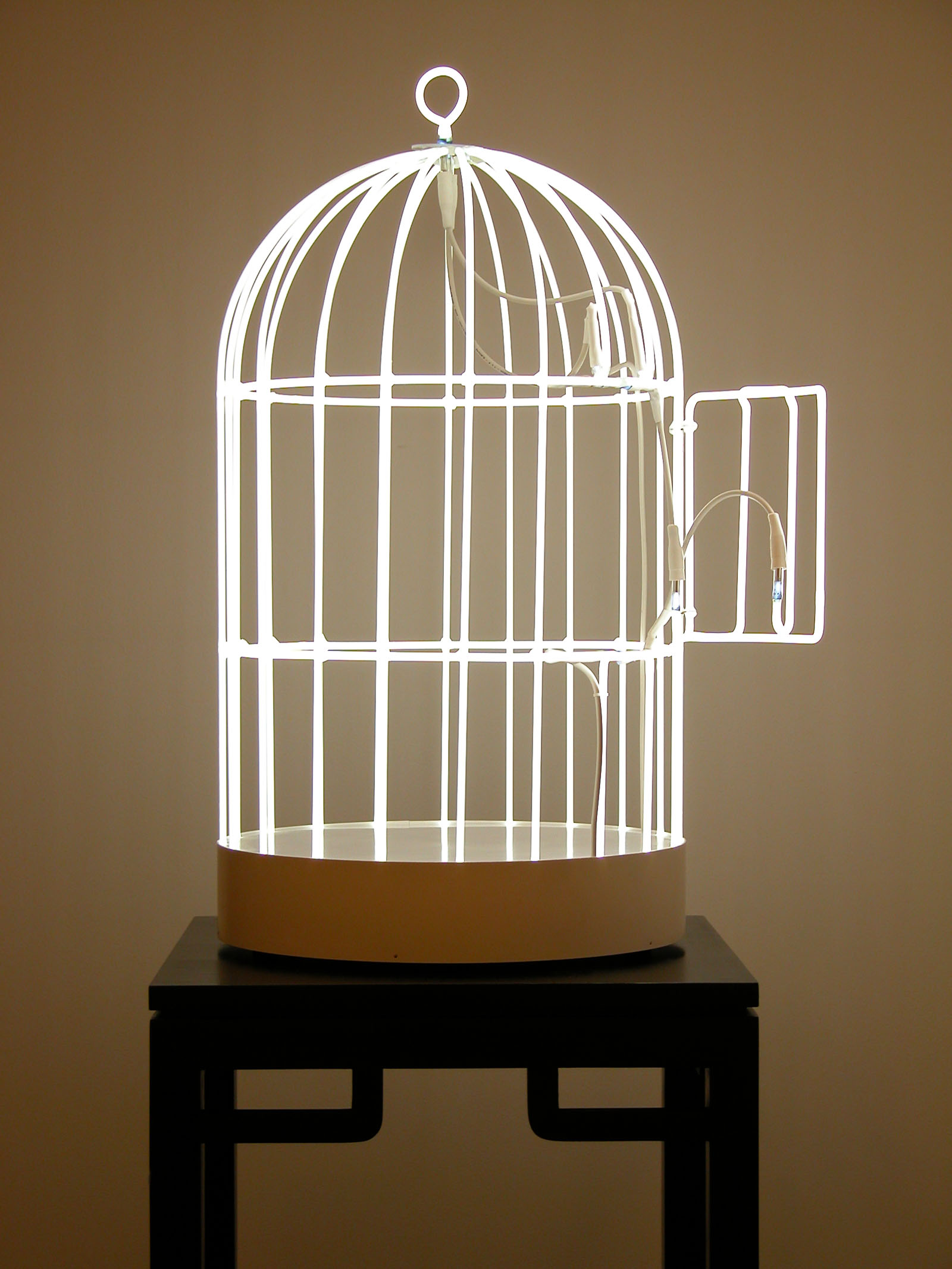 http://art4collectors.files.wordpress.com/2009/05/bird-cage-sculpture-only.jpg
